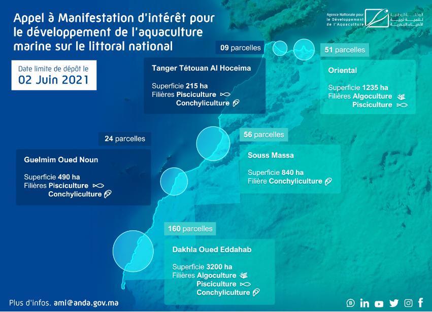 APPEL A MANIFESTATION D'INTERET POUR LE DÉVELOPPEMENT DE PROJETS D'AQUACULTURE MARINE